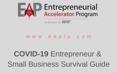 COVID-19 SURVIVAL GUIDE FOR SMALL BUSINESSES & ENTREPRENEURS